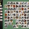 Jeu Mahjong Canin 2