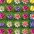 Jeu Puzzle Floral