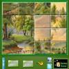 Jeu Puzzle Craze Green Nature